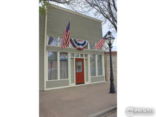 3740 Cleveland Ave, Wellington, CO 80549 (MLS #818030) :: 8z Real Estate
