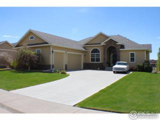 1840 Silverado Ln, Fort Lupton, CO 80621 (MLS #818050) :: 8z Real Estate