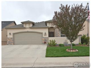 2007 81st Ave, Greeley, CO 80634 (MLS #818083) :: 8z Real Estate