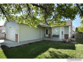 2306 Brianna Ct, Johnstown, CO 80534 (MLS #818097) :: 8z Real Estate