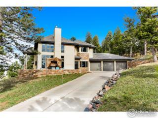 23725 Waynes Way, Golden, CO 80401 (#818108) :: The Peak Properties Group