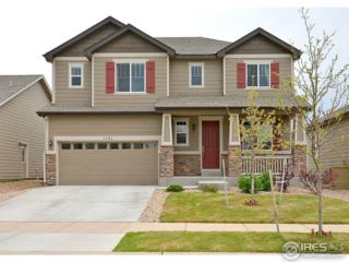 1121 101st Ave Ct, Greeley, CO 80634 (MLS #818125) :: 8z Real Estate