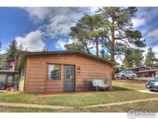 1250 S Saint Vrain Ave #13, Estes Park, CO 80517 (MLS #818206) :: 8z Real Estate
