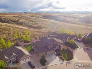 2109 Cape Hatteras Dr, Windsor, CO 80550 (MLS #818240) :: Colorado Home Finder Realty