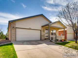 3584 W 20th St Rd, Greeley, CO 80634 (MLS #818262) :: 8z Real Estate
