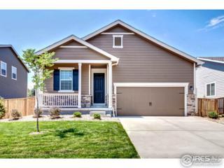 1450 S Grant St, Longmont, CO 80501 (MLS #818300) :: 8z Real Estate