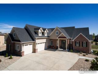 12928 Wabash Ct, Thornton, CO 80602 (#818323) :: The Peak Properties Group