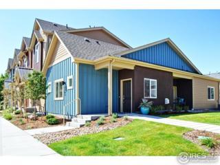 1319 S Collyer St J, Longmont, CO 80501 (MLS #818327) :: 8z Real Estate