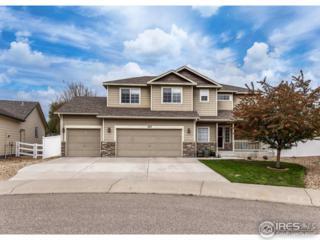 453 Wrybill Ct, Loveland, CO 80537 (MLS #818336) :: 8z Real Estate
