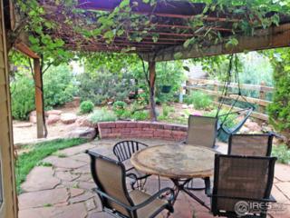 107 Noland Ct, Lyons, CO 80540 (MLS #818344) :: 8z Real Estate