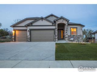 4339 Shepardscress, Johnstown, CO 80534 (MLS #818356) :: 8z Real Estate
