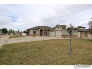 6715 23rd St, Greeley, CO 80634 (MLS #818358) :: 8z Real Estate
