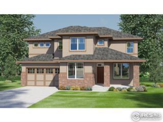 6140 Moran Rd, Timnath, CO 80547 (#818372) :: The Peak Properties Group