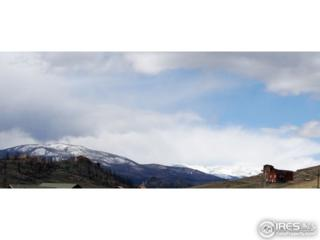 0 Meadow Mountain Dr, Livermore, CO 80536 (MLS #818380) :: 8z Real Estate