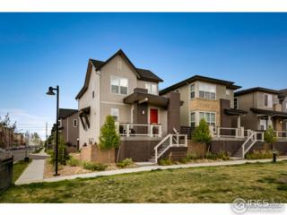 4100 Albion St #1119, Denver, CO 80216 (MLS #818386) :: 8z Real Estate