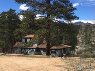 1121 Strong Ave, Estes Park, CO 80517 (MLS #818399) :: 8z Real Estate