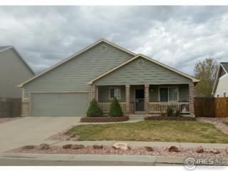3719 Ironhorse Dr, Evans, CO 80620 (MLS #818407) :: 8z Real Estate
