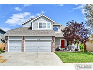 3819 Morrison Ln, Johnstown, CO 80534 (MLS #818408) :: 8z Real Estate