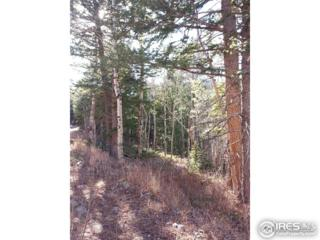 0 Monument Gulch Way, Bellvue, CO 80512 (MLS #818607) :: Downtown Real Estate Partners