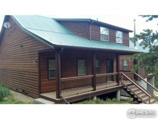 1740 Monument Gulch Way, Bellvue, CO 80512 (MLS #818841) :: Downtown Real Estate Partners