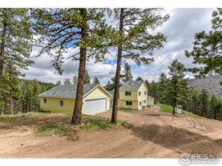 256 George Stadler Rd, Bellvue, CO 80512 (MLS #819898) :: Downtown Real Estate Partners