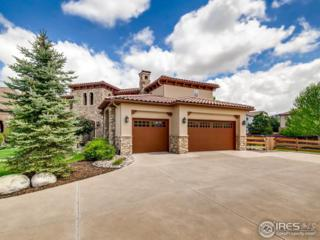 9700 S Shadow Hill Cir, Lone Tree, CO 80124 (MLS #820054) :: 8z Real Estate