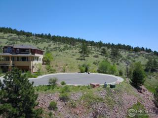617 1st Ave, Lyons, CO 80540 (MLS #820151) :: 8z Real Estate
