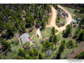 1993 Caribou Rd, Nederland, CO 80466 (MLS #820209) :: 8z Real Estate