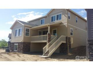 1890 Los Cabos Dr, Windsor, CO 80550 (MLS #820656) :: 8z Real Estate