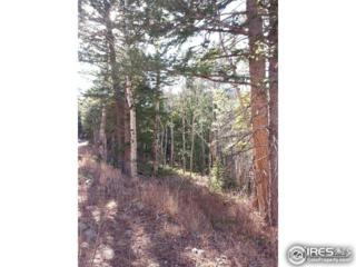 48 Monument Gulch Way, Bellvue, CO 80512 (MLS #820709) :: Downtown Real Estate Partners