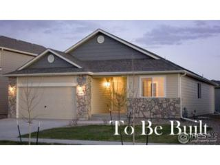4238 Paddock Dr, Wellington, CO 80549 (MLS #820737) :: 8z Real Estate