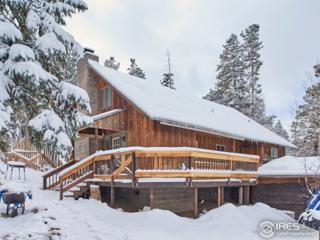 380 S Peak To Peak Hwy, Nederland, CO 80466 (MLS #820760) :: 8z Real Estate