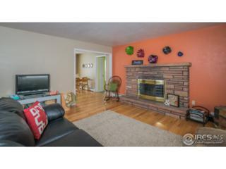 340 5th St, Estes Park, CO 80517 (MLS #820764) :: 8z Real Estate