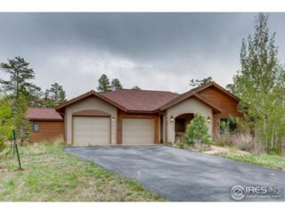 2110 Ute Ct, Estes Park, CO 80517 (MLS #820777) :: 8z Real Estate