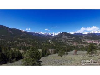 1909 Windcliff Dr, Estes Park, CO 80517 (MLS #820796) :: 8z Real Estate