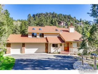 3884 Alpine Dr, Evergreen, CO 80439 (MLS #820805) :: 8z Real Estate