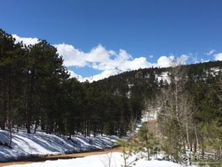 0 St Vrain Rd, Lyons, CO 80540 (MLS #820833) :: 8z Real Estate