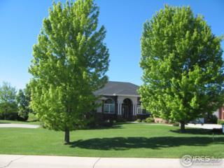 7400 Poudre River Rd, Greeley, CO 80634 (MLS #820848) :: 8z Real Estate