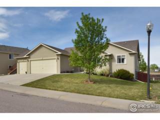 328 Brittle Bush Dr, Loveland, CO 80537 (MLS #820864) :: 8z Real Estate