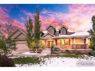 2902 70th Ave, Greeley, CO 80634 (MLS #820893) :: 8z Real Estate