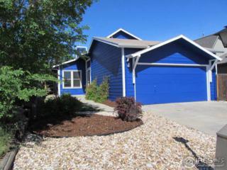 821 Hayden Ct, Longmont, CO 80503 (MLS #820895) :: 8z Real Estate