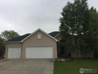 1334 52nd Ave, Greeley, CO 80634 (MLS #820902) :: 8z Real Estate