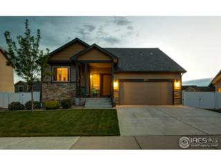 6851 Mcclellan Rd, Wellington, CO 80549 (MLS #820929) :: 8z Real Estate