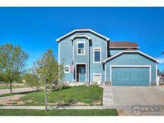 3427 Riesling Ct, Greeley, CO 80634 (MLS #821215) :: Downtown Real Estate Partners