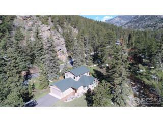 1280 Fall River Dr, Estes Park, CO 80517 (MLS #821259) :: 8z Real Estate