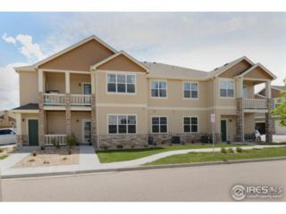6607 W 3rd St #1010, Greeley, CO 80634 (MLS #821271) :: 8z Real Estate