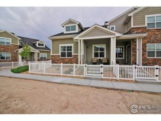 2165 Montauk Ln #1, Windsor, CO 80550 (MLS #821280) :: Downtown Real Estate Partners