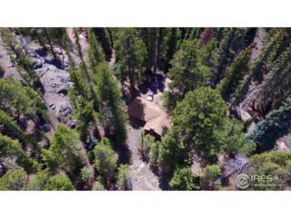 1790 Wind River Trl, Estes Park, CO 80517 (MLS #821290) :: 8z Real Estate