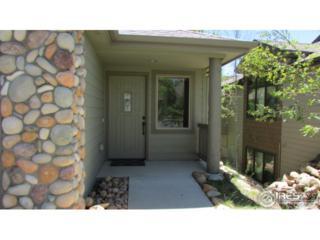 616 Park River Pl, Estes Park, CO 80517 (MLS #821331) :: 8z Real Estate