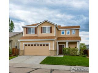 3856 Gardenwall Ct, Fort Collins, CO 80524 (MLS #821408) :: 8z Real Estate